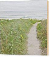 Usa, Massachusetts, Nantucket Island Wood Print