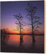 Usa, Tennessee, Reelfoot National Wood Print