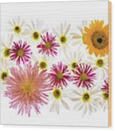 Variety Of Flowers Against White Wood Print