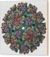 Vee Equine Encephalitis Virus Capsid Wood Print by Science Photo Library
