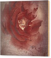 Victorian Rose Wood Print