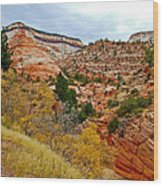 View Along East Side Of Zion-mount Carmel Highway In Zion National Park-utah   Wood Print