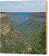 View From Sun Temple In Mesa Verde National Park-colorado  Wood Print