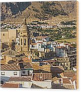 View Of The Town Loja In Granada Province Wood Print