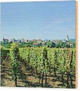 Vineyard, Alsace, France Wood Print