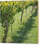Vineyard Farm Wood Print