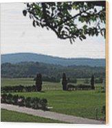 Vineyards In Va - 12123 Wood Print
