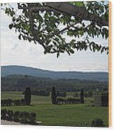 Vineyards In Va - 12124 Wood Print