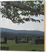 Vineyards In Va - 12125 Wood Print