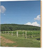 Vineyards In Va - 12127 Wood Print
