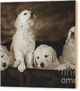 Vintage Festive Puppies Wood Print