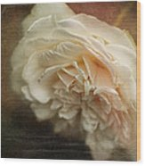 Vintage Tea Rose Wood Print