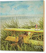 Vintage Toy Plane In Tall Grass At The Beach Wood Print by Sandra Cunningham