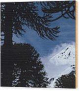 Volcano In Patagonia, Argentina Wood Print