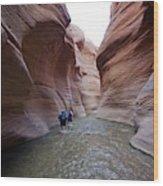 Wadi Hassa Wood Print