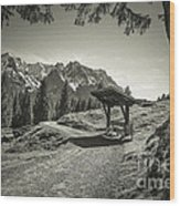 walking in the Alps - bw Wood Print