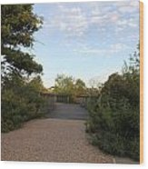 Walkways Wood Print