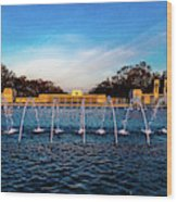 Washington D.c. - Fountains And World Wood Print