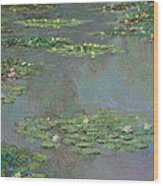 Water Lilies   Nympheas Wood Print