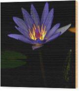 Lotus Bloom 2 Wood Print