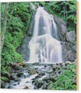 Waterfall In A Forest, Moss Glen Falls Wood Print