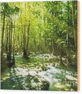 Waterfall In Rainforest Wood Print by Atiketta Sangasaeng