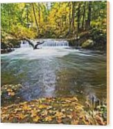 Waterfall On Whatcom Creek Wood Print