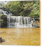 Wentworth Falls Blue Mountains Wood Print