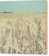 Wheat Crop Wood Print