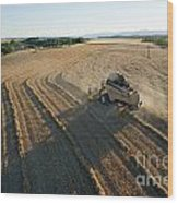 Wheat Harvest In Provence Wood Print