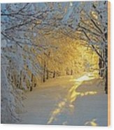 When Snow Falls Nature Listens Wood Print