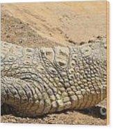 White Crocodile Wood Print