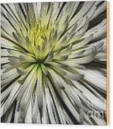 White Wood Print