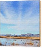 White Water Draw Preserve Wood Print