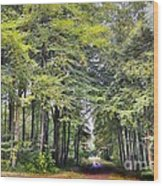 Whitwell Wood Wood Print