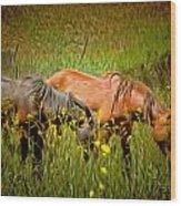 Wild Horses In California Series 2 Wood Print