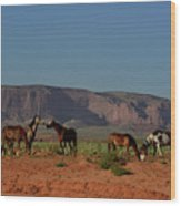 Wild Horses In Monument Valley Wood Print