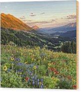 Wildflower Moonrise Wood Print