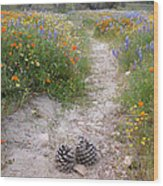 Wildflower Wonderland 11 Wood Print