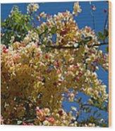 Wilhelmina Tenney Rainbow Shower Tree Wood Print