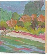 Willamette River 31 Wood Print