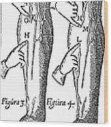 William Harvey: Blood, 1628 Wood Print