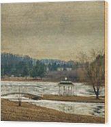 Willow Lake  Wood Print by Kathy Jennings