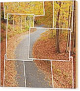 Winding Alley In Fall Wood Print