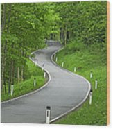 Winding Road In The Woods Wood Print