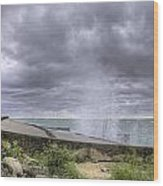 Winds At Point Betsie Wood Print