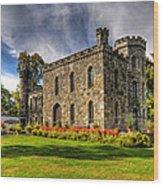 Winnekenni Castle V2 Wood Print