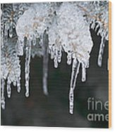 Winter Branches In Ice Wood Print