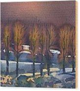 Winter Fantasy Wood Print