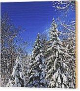 Winter Forest Under Snow Wood Print